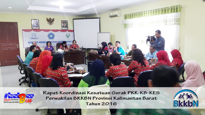Modifikasi Program antara PKK dengan BKKBN